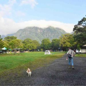 戸隠キャンプ2020④ 朝の散歩