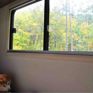 長野キャンピングカーの旅2020秋⑥ 雨ふり
