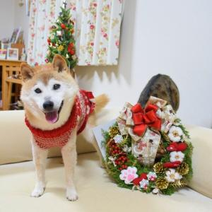 今年の我が家のクリスマスリースです!