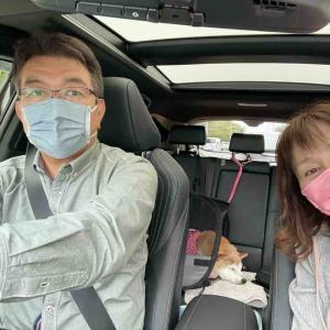 かぼちゃんの2021年秋の東北旅行⑤ 新かぼす号で快適ドライブ
