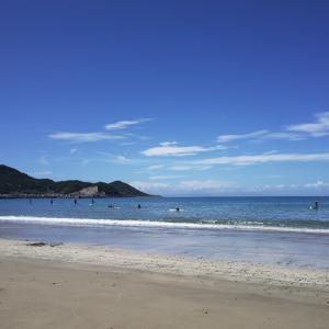 台風がそれたので海で泳いできました。先週と同じ和歌山の産湯海岸。