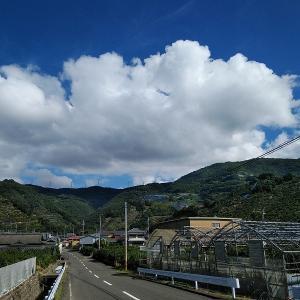 和歌山のラルプデュエズと呼ばれる千葉山ヒルクライムしてきました