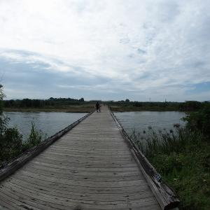 家から自走で行ける木津川の流れ橋へ行ってきました。
