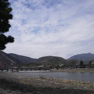 久々に自転車に乗りました。嵐山まで往復90キロ。