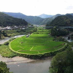 和歌山のあらぎ島に行ってきました。予想以上に晴れて汗だく。