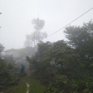 比良山系のカラ岳に登ってきましたが、終始雲の中でした。
