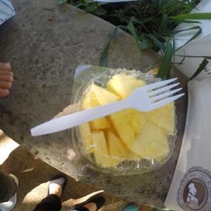 2019 3世代ハワイ旅行記 6日目 ②⑥ Hawaiian Crown Pineapple