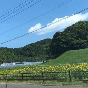 福岡県糸島市 芥屋海水浴場