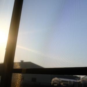朝から晴天