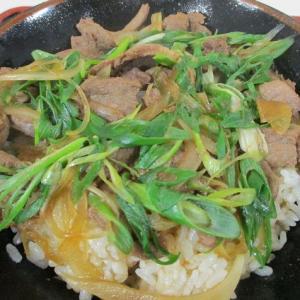 和歌山県庁でシビエ料理?「和歌山県庁地下食堂 信濃屋」しし丼
