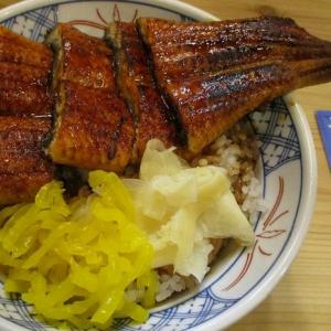 結局は「磯丸水産」のうな丼 ~「浜焼ドラゴン 大阪駅前第3ビル店」