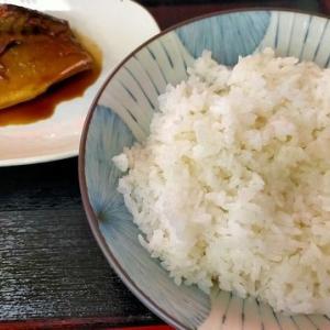 岸和田青果卸売市場でワンコイン サバ味噌煮定食を「市場食堂」