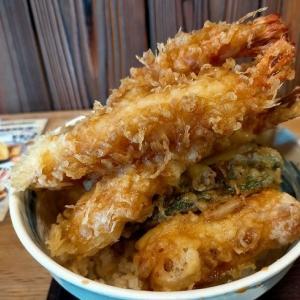 ボリュームある大海老天丼 「木津市場 一味禅」