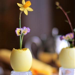花はベランダで咲くミニスイセンとヴィオラ♪