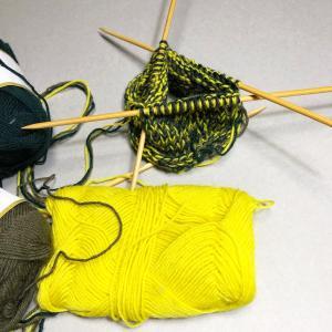 第五の会の名称の変更 「Spin to Knit」