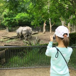 我が家の夏2021~バーゼル動物園で密!~