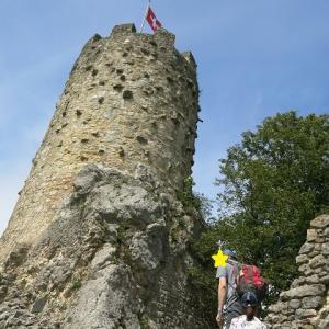 我が家の夏2021~城跡で塔に登る、Ruine Neu-Falkenschtein~