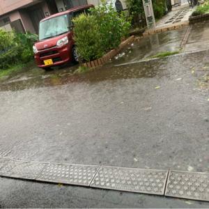台風一過(2019年9月版)