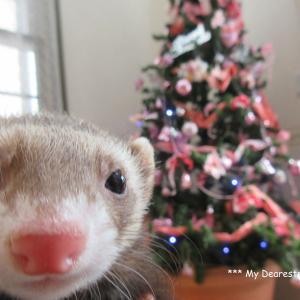 クリスマスの準備・心の準備