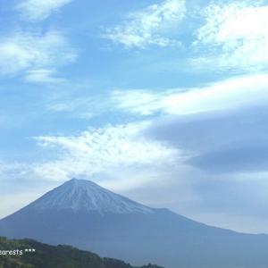 富士山に叫んだ日