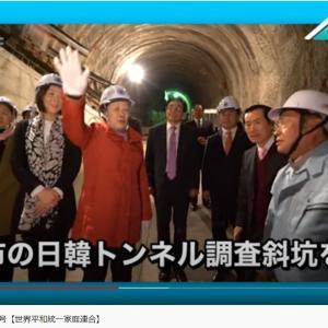 U-ONE NEWS 2020年6月12日号【世界平和統一家庭連合】