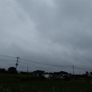 雨の合間に・・・