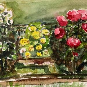 日比谷公園のバラ
