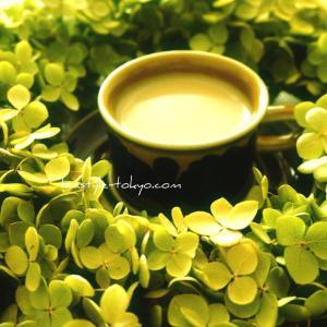 【花と紅茶】アナベルとミルクティー