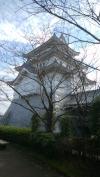 関宿城🏯行って来ました。