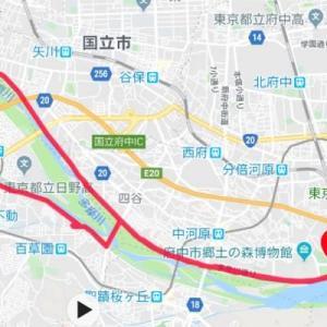 多摩川マラニック♪