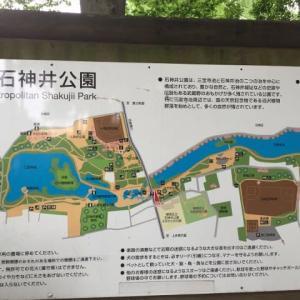 【ご近所探索ラン】石神井公園