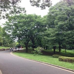 久しぶりの代々木公園