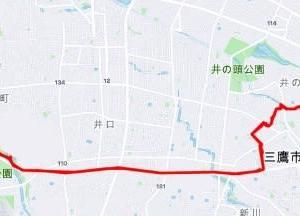 【ご近所探索ラン 40K】国分寺崖線で坂道練習