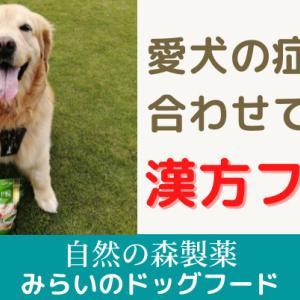 【リピート中】漢方薬膳で病と闘う!『みらいのドッグフード』
