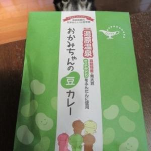 湯原温泉 おかみちゃんの豆カレー