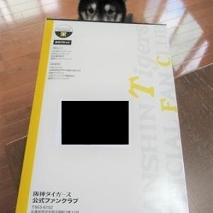阪神ファンクラブ ウル虎の夏2020限定オリジナルジャージプレゼント