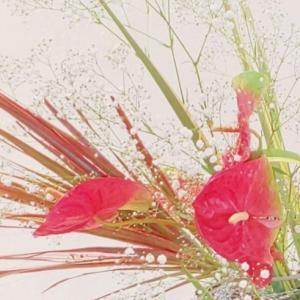 開催中のいけばな草月西支部展示会in花と緑の文化センター