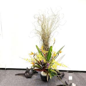 和のお花が沢山展示されてます~今日から展示会