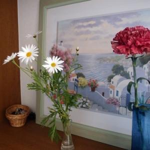部屋に花を飾ろう ハナノヒはじめました