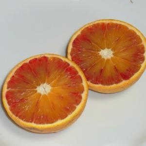 モロオレンジ
