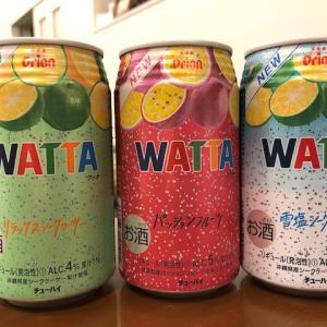 新商品・・・o(゚ー゚*o)(o*゚ー゚)oワクワク