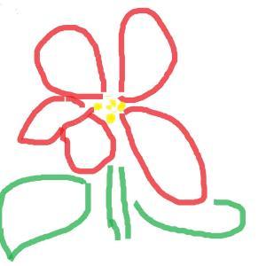 私の特別の花です
