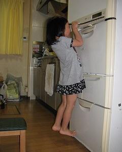 懸垂で活躍した冷蔵庫の冷えが悪い