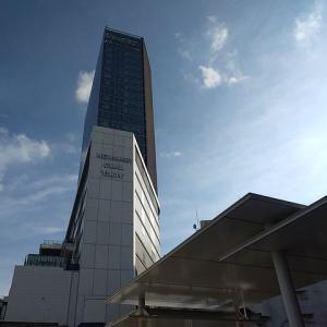 JR横浜タワーから東横フラワー緑道へ、はまレールウォークが開通しました。