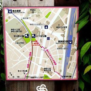 シリーズ横浜の緑道_その3・・・滝の川せせらぎ緑道。