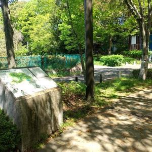 シリーズ横浜の緑道_その23・・・やさきのみち&しらさぎのみち、前編。