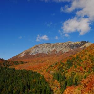 大山の紅葉の見ごろは、例年10月下旬から11月上旬/Q&A