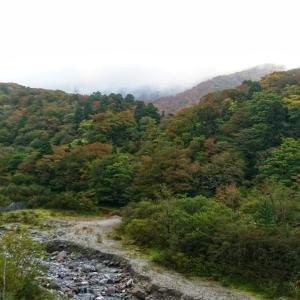 大山の紅葉、だいぶ色づいてきました!