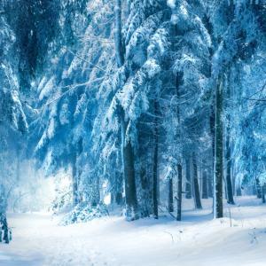 大山周辺で冬季休業する施設の一覧2020-2021