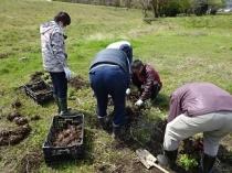 第8期・第8回 3限目実習 「サトイモの定植、道路工事」